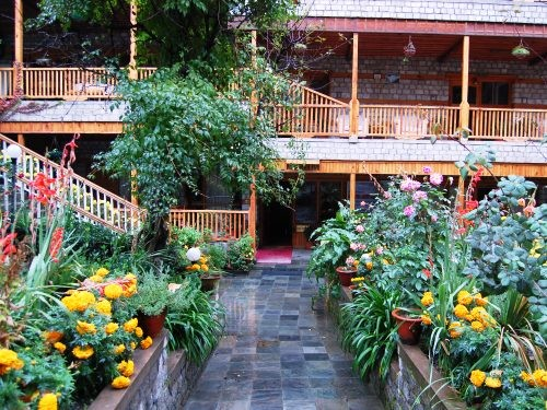 India hotel courtyard full of plants