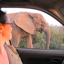 Rickshaw South Africa Travel Specialist Fiona looking at an elephant standing outside her car
