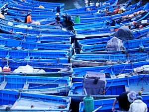 blue boats moored in harbour