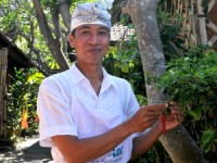 Ketut our Balinese chef showing us home grown chillies